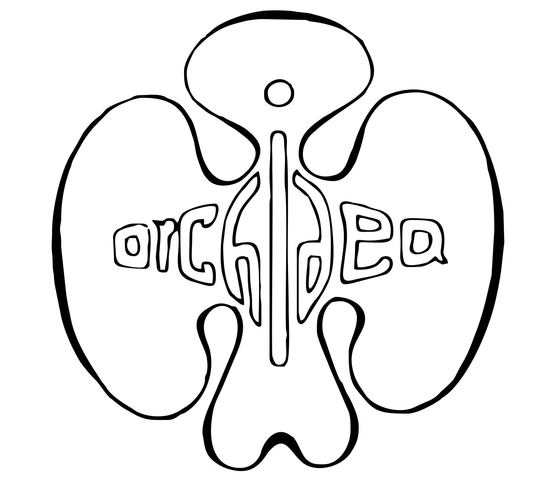 ZUŠ Orchidea